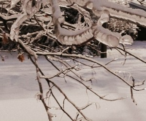 snow post 1