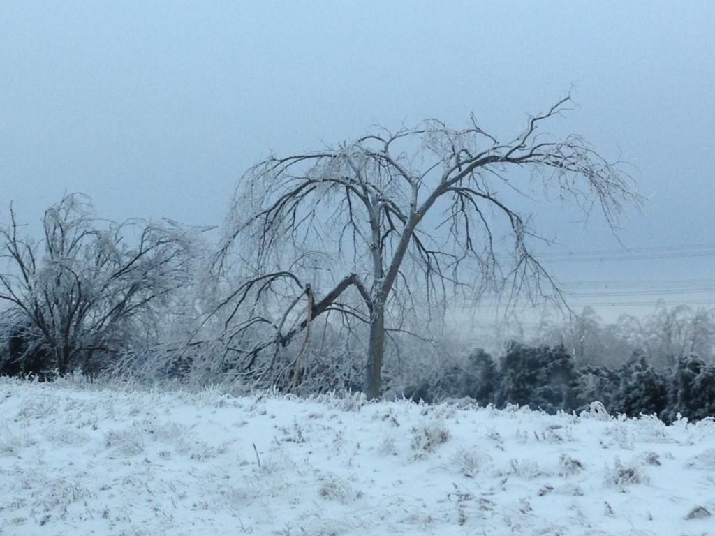 ice storm1